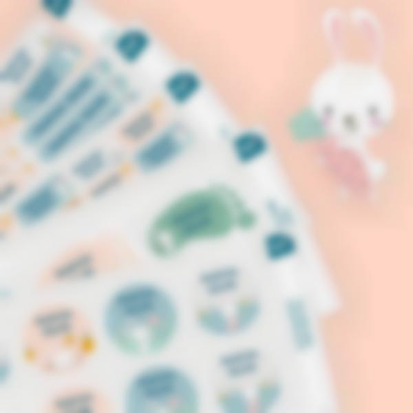 8.pack de etiquetas creche coelho