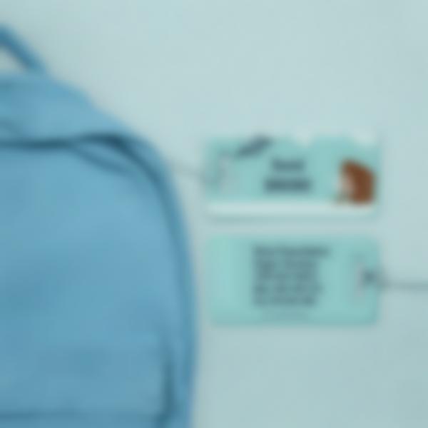 etiquetas para bagagem 2