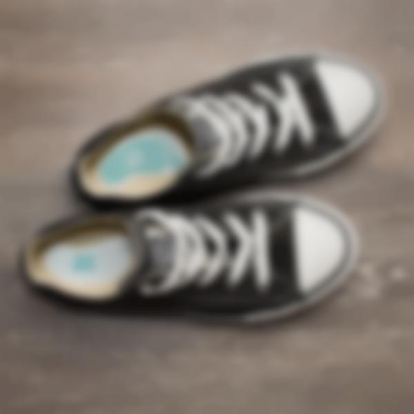 etiquetas para calcado 2