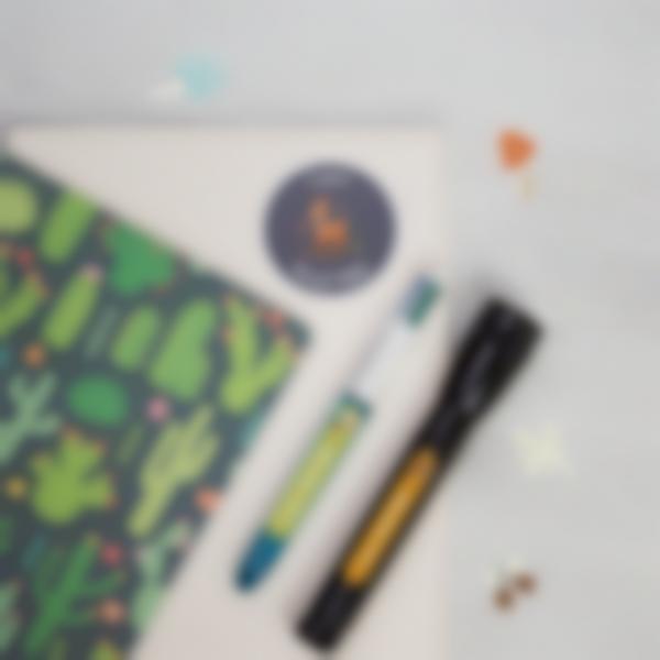 pack de etiquetas para excursdes escolares 3