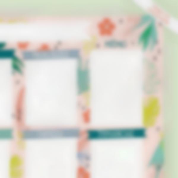 planning menu tropical defauts legers zoom