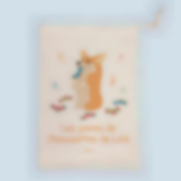 sac rangement chaussettes 2 1