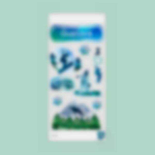 sticker gourde snowboard cantimplora garrafa bottle borraccia 2