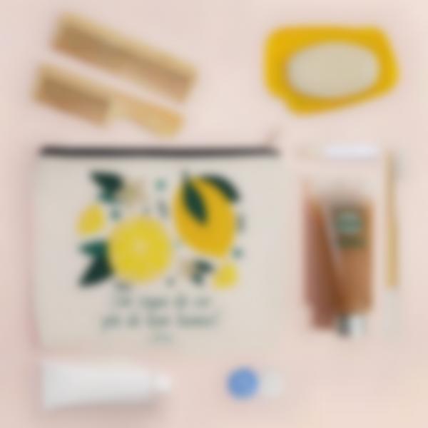 trousse citron ambiance pt 1