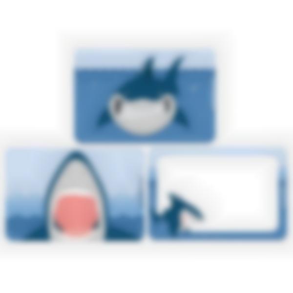 Recarga de 3 cartões magnéticos paraLudibox - lancheira – Tubarão