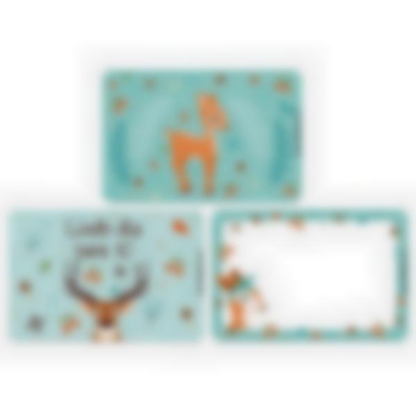 Recarga de 3 cartões magnéticos para Ludibox – lancheira – Floresta
