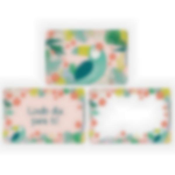 Recarga de 3 cartões magnéticos para Ludibox – lancheira – Tropical