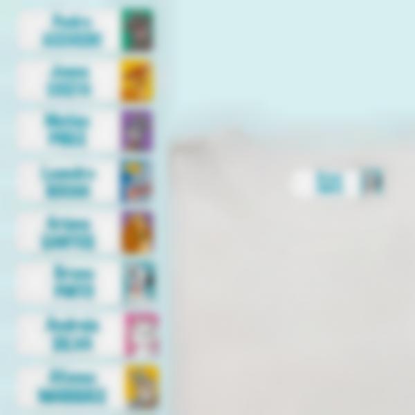 Etiquetas Termoaderentes - Personalização Múltipla - Disney Animais
